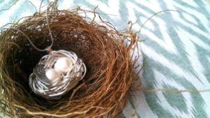 Birds nest 6